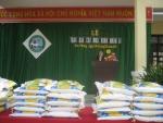 Hoạt động Cây Mùa xuân nhân ái Trường Tiểu học Sơn Phong