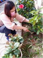Trường MG Cẩm Nam hưởng ứng phong trào tết trồng cây mừng xuân