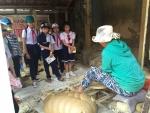 Trường Tiểu học Nguyễn Bá Ngọc tổ chức  Cho học sinh tham quan làng gốm Thanh Hà