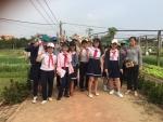 Trường Tiểu học Nguyễn Bá Ngọc tổ chức tham quan làng rau Trà Quế
